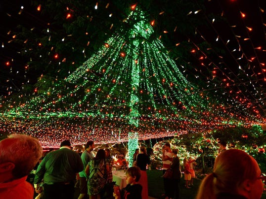 A picture dated 24 November 2013 shows the Guinness Christmas lights world record made in Canberra, Australia.
