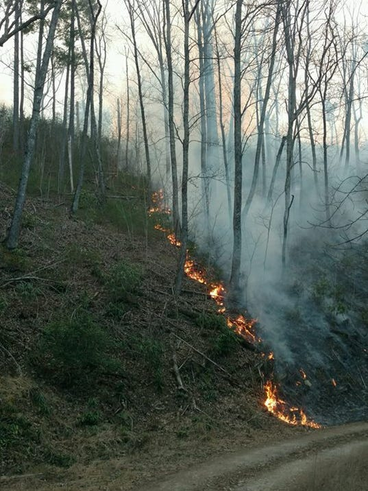 Us Forest Fire Map Globalinterco - Us forestry wildfire map