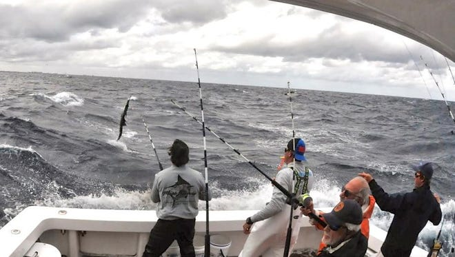 Mark Donohue battles a leaping sailfish aboard the Miss Annie. The fish was last year's winner in the Silver Sailfish Derby sponsored by the West Palm Beach Fishing Club out of Sailfish Marina on Singer Island. The Miss Annie crew, led by Capt. Randy Yates, scored 14 releases in the two-day tournament.