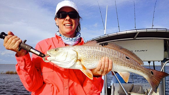 Plenty of slot redfish are holding in marsh grass this week.
