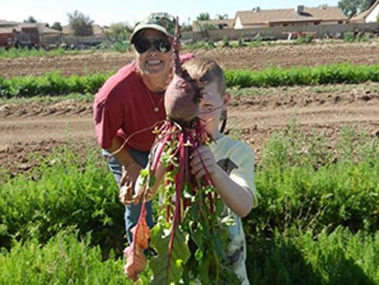 Coseche sus propias verduras en Tolmachoff Farms de