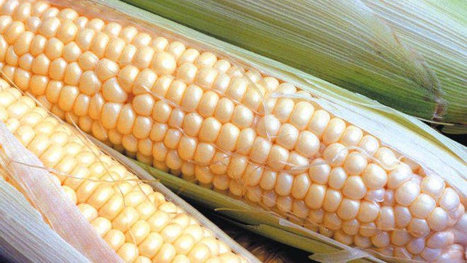 Eating more sweet corn is on columnist Theodore Decker's Summer 2021 to-do list.