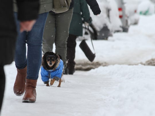 Follow these tips to keep you and your pets safe during the cold weather.
