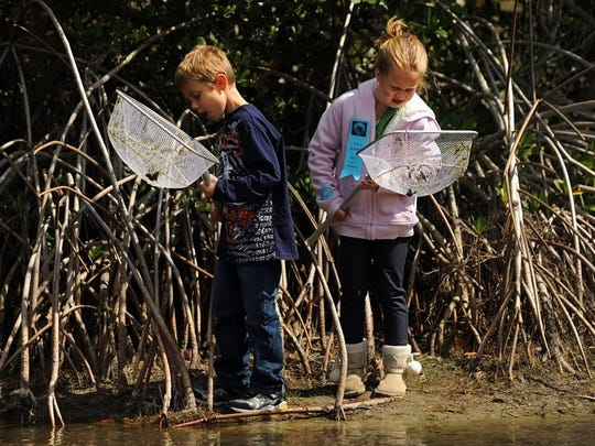 The annual EcoFest is this weekend at the Environmental Learning Center in Vero Beach.