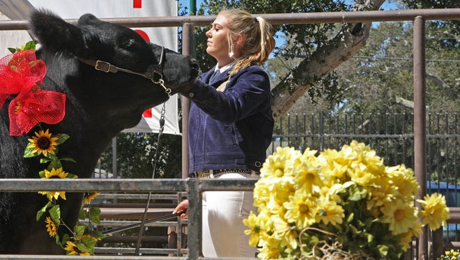Junior Livestock Auction at the 2015 Monterey County Fair