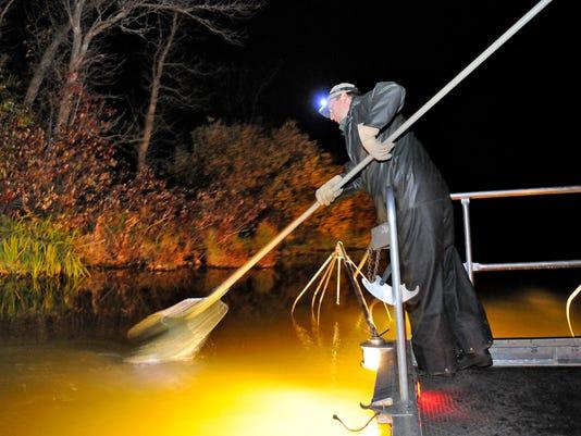 STC 1026 DNR Elecrtofishing 1.jpg