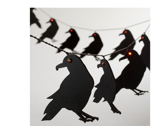 A conspiracy of raven lights add spooky illumination