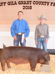 Christopher Morgan exhibited his duroc swine who placed