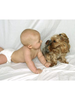 When Peggy and Bill Johnson's grandson, Brent Gunter, was 8 months old, he liked to play with their Yorkie named Cassie.