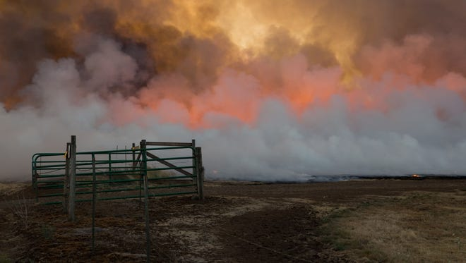 """Local artist Patrick Collier's collection """"Field Burns"""" will be on exhibit at Portland State University Jan. 24 - May 15."""