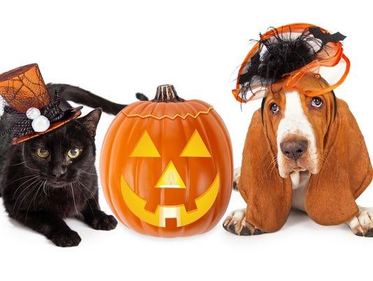 hallowee