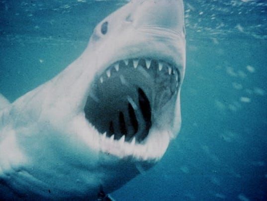 1975jaws