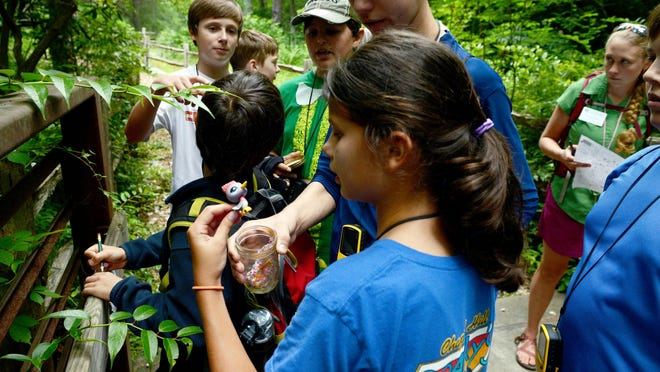 Campers examine a geocaching container at the Arboretum on Monday afternoon.