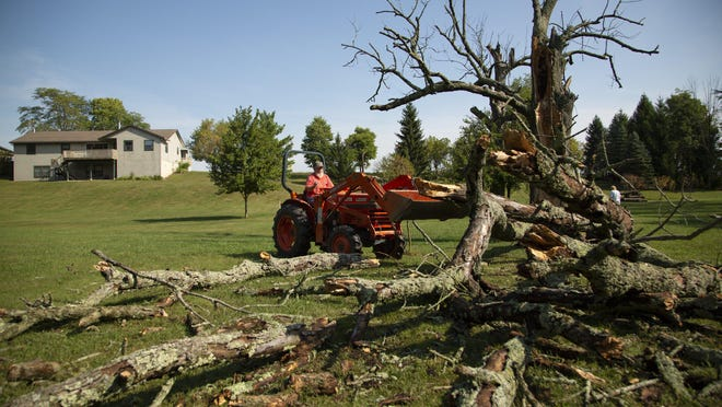 Bob Dienhart, 69, of Marysville surveys the damage of a fallen tree outside his home near the Delaware and Union county line on Tuesday, Sept. 8, 2020. A strong thunderstom knocked out his power for five hours and caused minor damage in the area the night before.