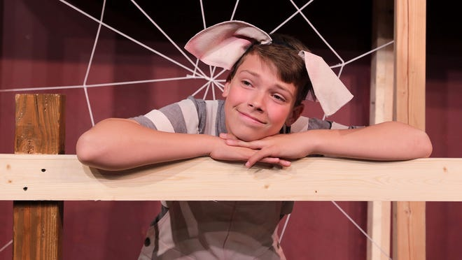 """Will Donaghy stars as """"some pig"""" in """"Charlotte's Web"""" at the Des Moines Community Playhouse."""