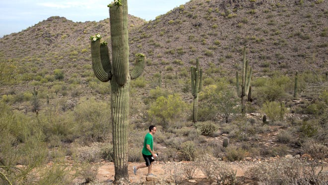 Scottsdale voters twice taxed themselves to acquire a corner of McDowell Sonoran Preserve.