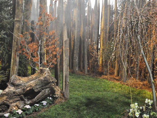 'Into the Woods' at the 2015 Philadelphia Flower Show,