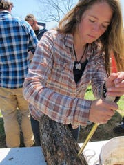 Katy Marshall inoculates a log with shiitake mushroom spawn at Eddy Farm in Middlebury.