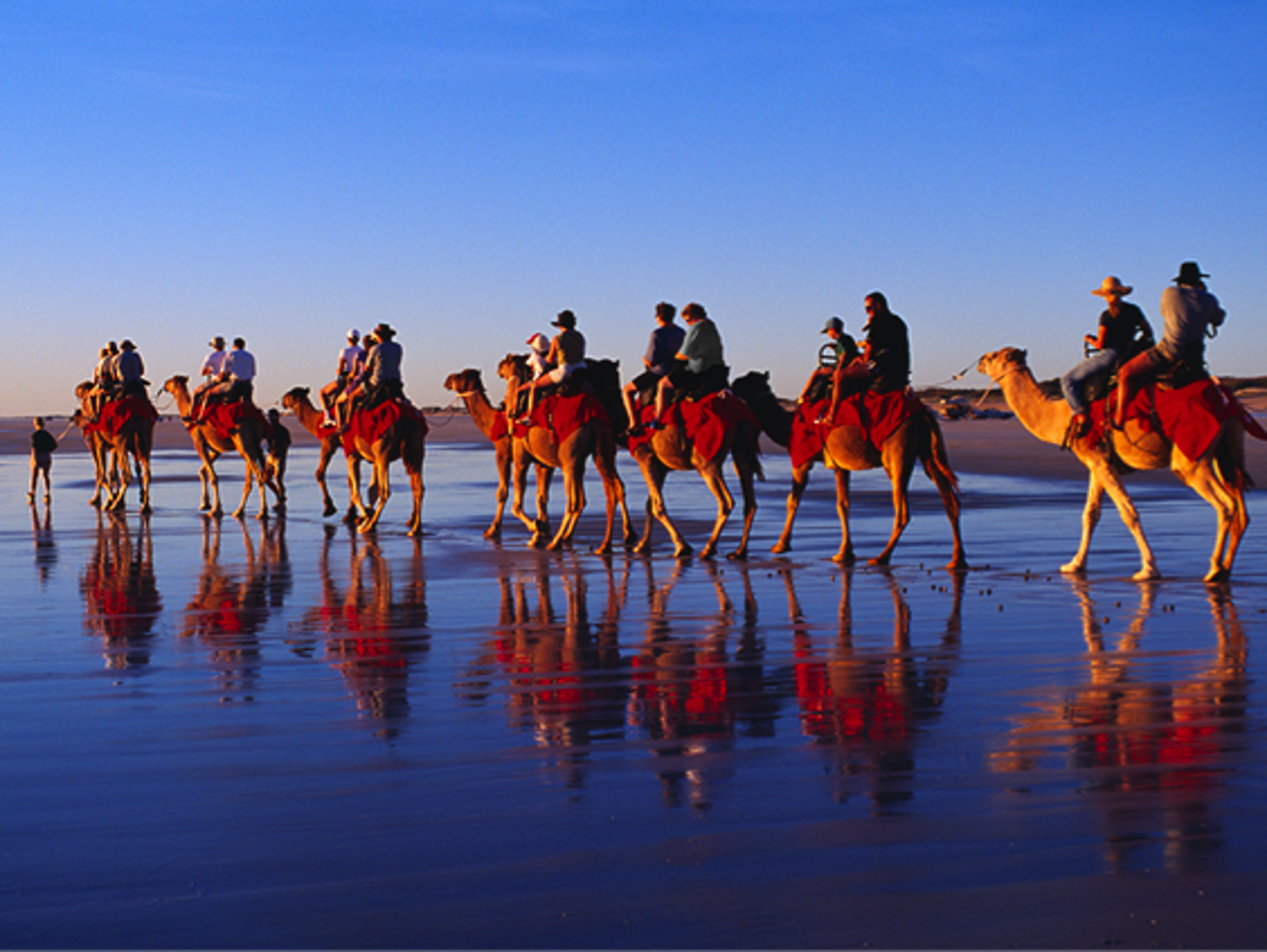 Experience the beauty of Cable Beach while riding a