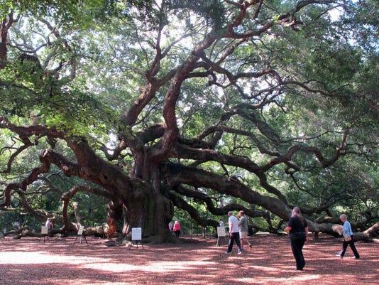 Travel-Trip-Savannah and Charleston (6)