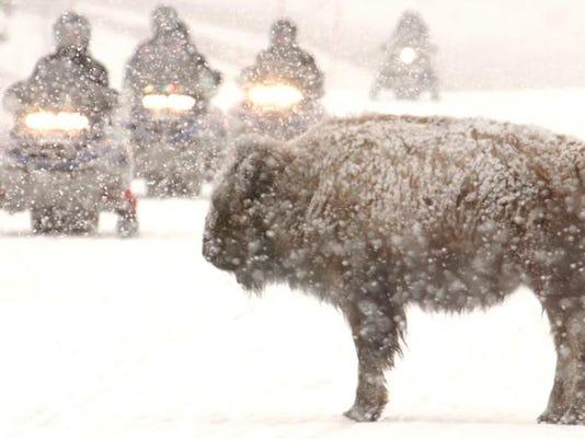 FAL 1222 Yellowstone winter use main 1A secondary.jpg