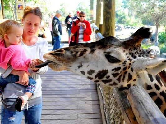 Zoo Anniversary 17.jpg