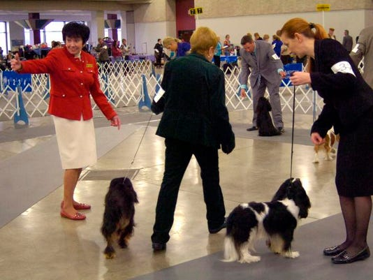 -ANI Dog Show Contract Review1.jpg_20140204.jpg