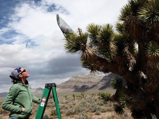 -Joshua Trees Climate Change.JPEG-0ea73.jpg_20140206.jpg