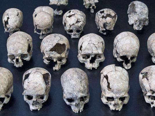 Human Skulls.JPG