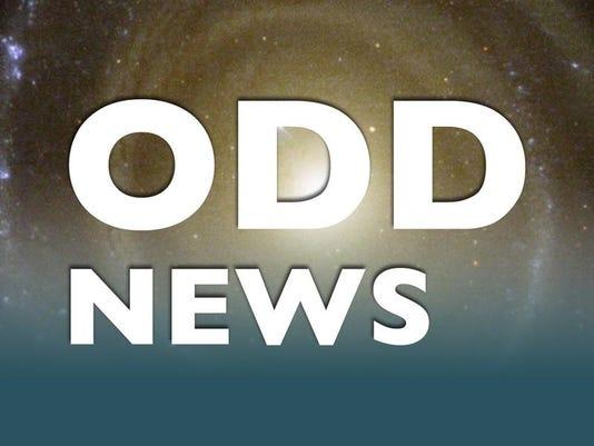 ODD.NEWS.jpg