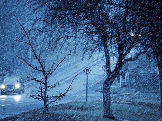 Snow Fall_Brum.jpg