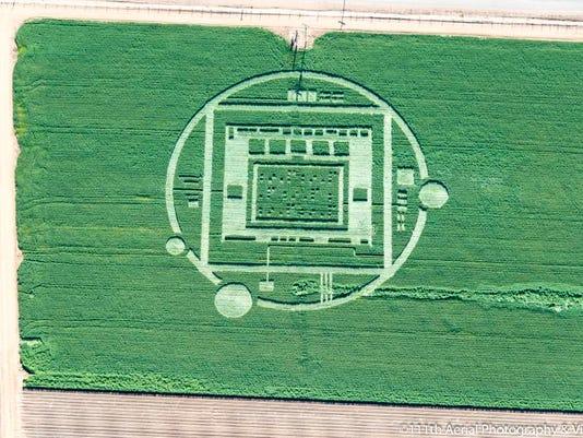 crop circle 4 (2).jpg