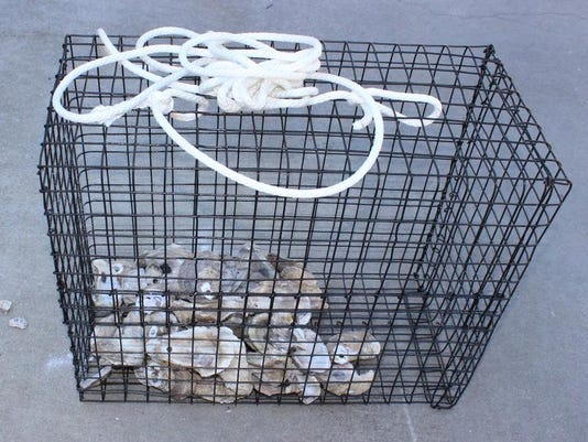 Basket with oysters.jpg