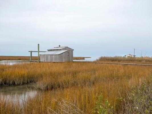 le- Smith Island 6427.jpg