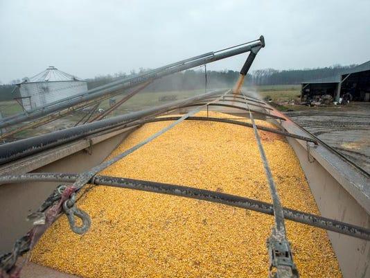 le- Biz Life in Day of Farmer 9821.jpg