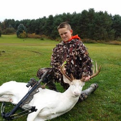 Gavin Dingman, 11, of Oceola Township bagged a rare 12-point albino deer last week, using a crossbow while hunting with his father, Mick Dingman.