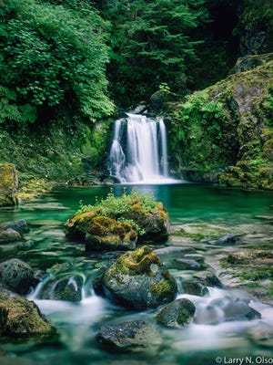 This photo of a small waterfall on Opal Creek, taken in 1989 by Larry Olson, helped build the momentum to preserve the area from logging.