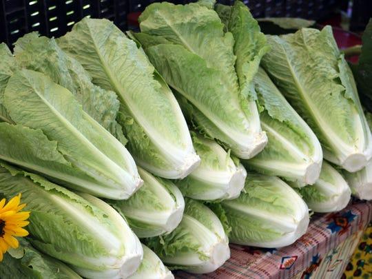 """La lechuga romana del """"tazón de ensalada del mundo"""" es nuevamente segura para su consumo, anunciaron los Centros para el Control de Enfermedades (CDC, por sus siglas en inglés) a principios de este mes."""