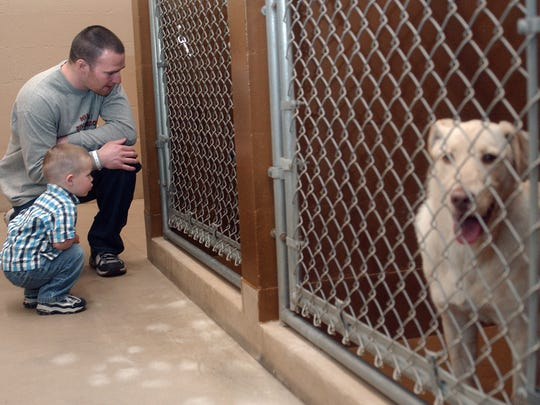 A father and son look for a pet to adopt inside the Bay Area Humane Society.