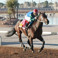 Tracey Hebert, Runaway Ghost trying to qualify for the Kentucky Derby