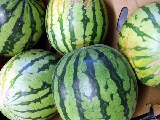 Cecil Farms' watermelons are grown in the sandy soil along the Ohio River on the Kentucky side. They are prized throughout the eastern part of the U.S. under the brands Melon 1 and Dulcinea.