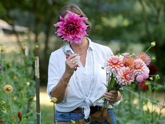 Carolyn Thompson owner Willow & Mabel flower farm in