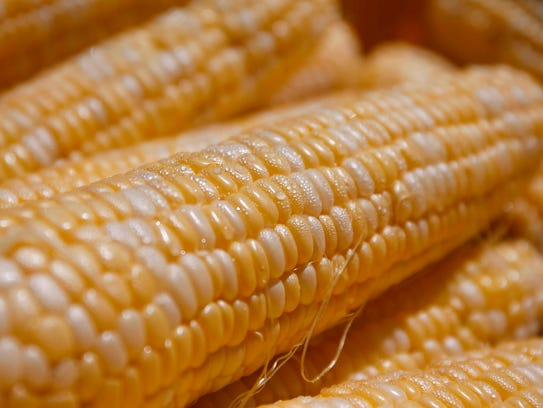 Thousands of ears of corn were served up during the