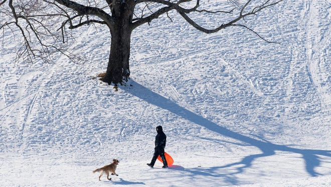 Charlie, a 1-year-old golden retriever, coaxes Drew Waldrup of Evansville up the hill at Helfrich Hills Golf Course after he had chased him to the bottom Thursday afternoon. R.C. Lehman, Charlie's owner and a teacher, was taking advantage of the fifth consecutive snow day.