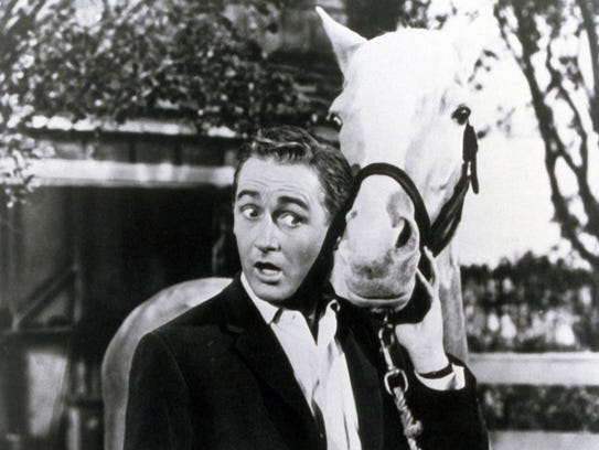 Alan Young as Wilbur Post with Mister Ed in a scene