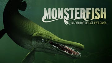 """The Discovery Reno extends """"Monster Fish"""" exhibit to run through Sept. 5."""