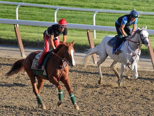 Belmont Stakes Horse _Demk(1).jpg