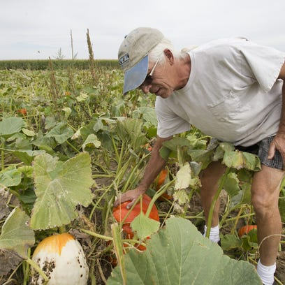 Fall into fall: NoCo's pumpkin patches, haunted houses