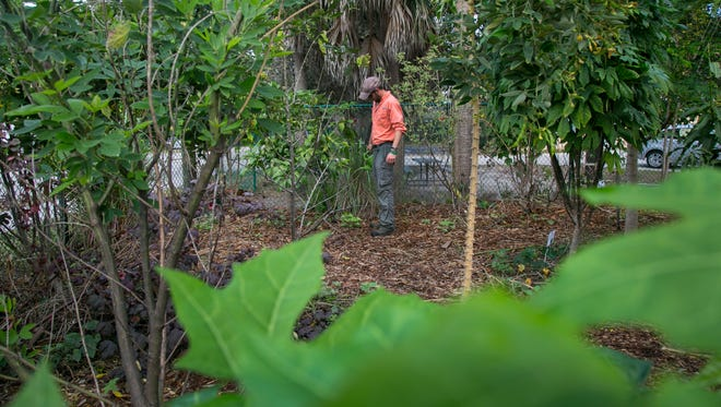 Arlo Simonds waters plants with worm tea on Wednesday in the food forest test corner at the Pine Manor Community Garden. The corner is a small-scale model for what he wants to do with the lot across the street.