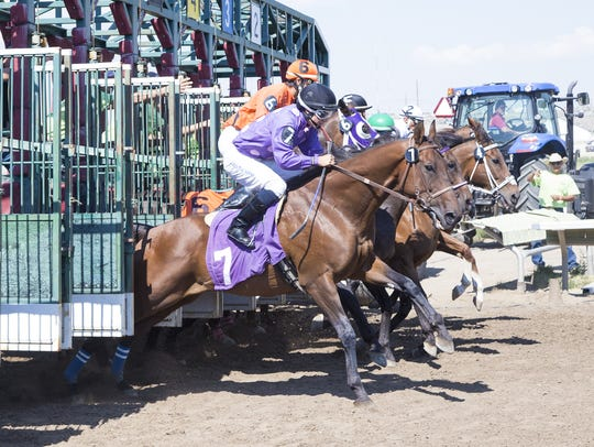 Horses and riders dart out of the gate during horse